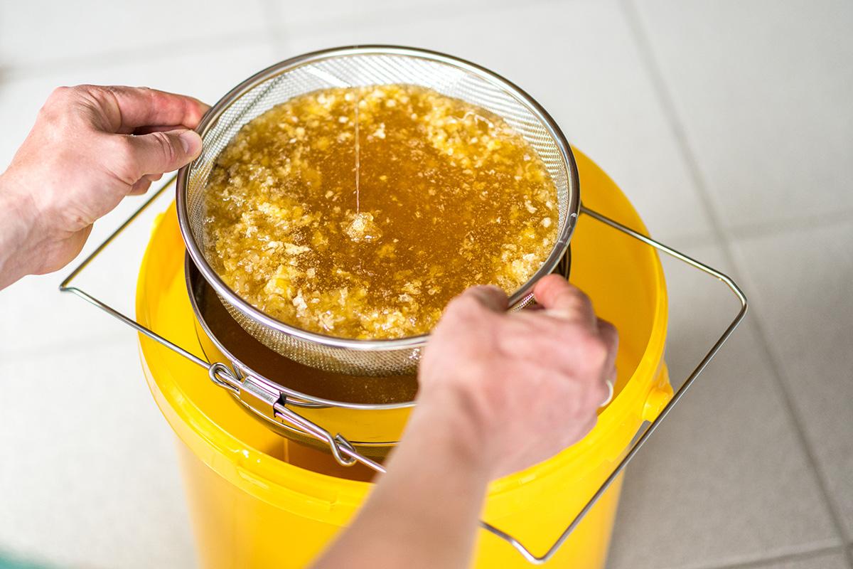 Honigbienen-und-Imker-Filitz-Fotografie-6